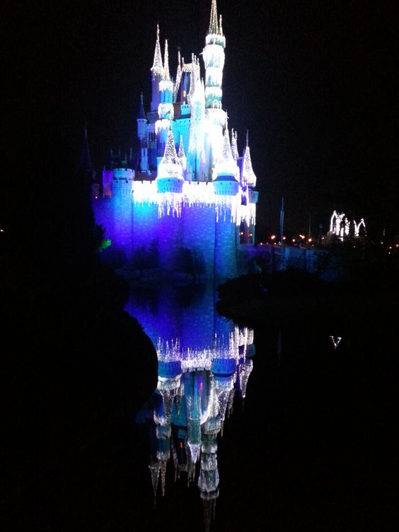 The Castle Dream Lights are just beautiful!