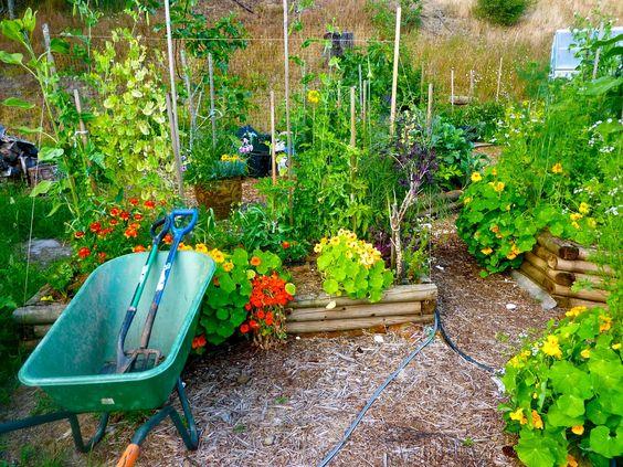 Denman Conservancy Home & Garden Tour: Maresia - Mike and Selinda White