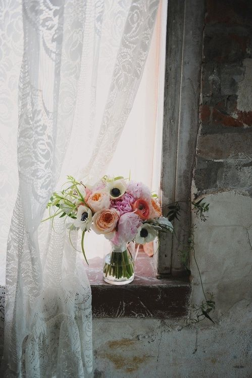 flowers. bloom . window