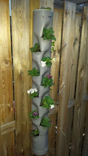 Practico jardin vertical con un tubo de pvc hidroponia for Materiales para jardines verticales