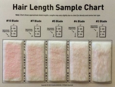 Shave Blade Sample Chart For Grooming Dog Grooming Shop Dog Grooming Tips Dog Grooming Business
