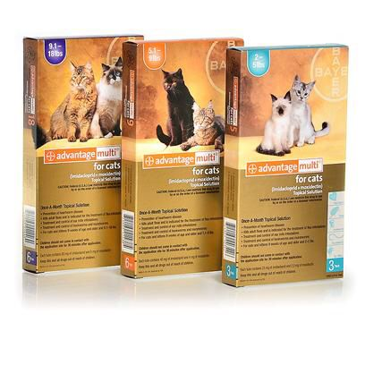 Selamectin. Revolution topical for dogs. Treats heartworm