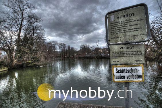 Allschwiler Weiher Foto zum Album: http://myhobby.ch/index.php?id=1279&gallery=137