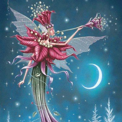 Holly Faerie 3