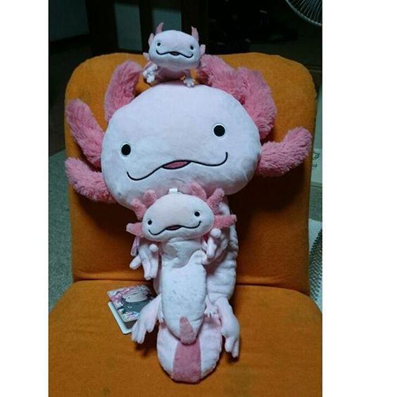 """""""HOLA!! さらまんだーず""""のぬいぐるみグッズを、誕生日プレゼントしてもらいました可愛いですよー (HOLA!! さらまんだーず  I received birthday gift. )#hola さらまんだーず#ぬいぐるみ#stuffed toy #mermaid#人魚#angel #天使#ウーパールーパー #axolotl #水槽 #water#置物 #figure#figure skate#メキシコサラマンダー #wing#翼#可愛い #ペット#pets #ふなっしー #マスコットキャラクター"""