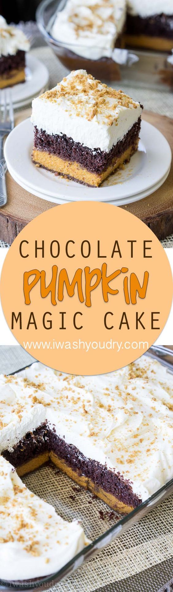 Three layers of deliciousness in this Chocolate Pumpkin Magic Cake! Seriously the best dessert this Fall!