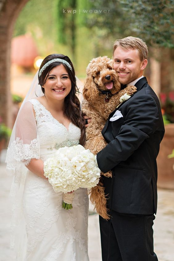 Dog in wedding. (Ellie and Sam August 4th)