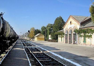 Orașul Caușeni                  : Istoria orașului Caușeni