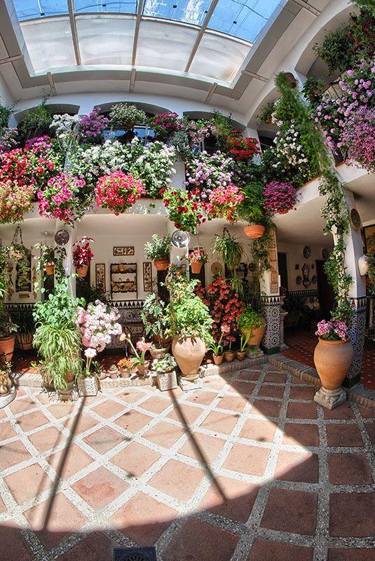 Patio de la calle Parras, 5.- Fue construido en el año 1983, siguiendo los ideales de la Arquitectura árabe con todas sus estancias dirigidas al patio, combinando el uso del agua con una gran variedad de flores y plantas.