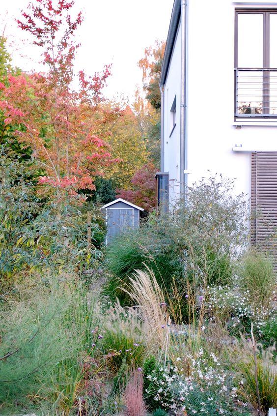 Dieartigegarten Oktobergarten Felsenbirne Mit Blick Die Nordseite Entlang Garten Garten Bepflanzen Bepflanzung