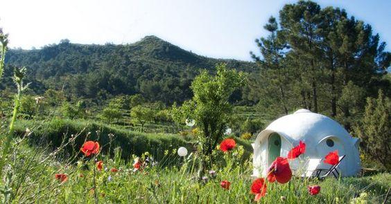 Top 15 des sites de camping incroyables pour changer de la canadienne: