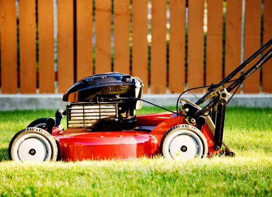 The Best Things You Can Do For Your Lawn Lawn Mower Lawn Mower