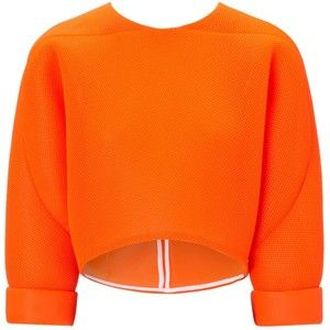 Maticevski Fluoro Mesh Synthesis Cropped Top