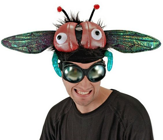 stupid hats | Buzzy Fly Hat - Adult Hat