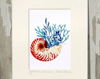 8x10 Matted Art Print TITLED & SIGNED / Seashell / Nautilus / Seagrass / Wall Art / Beach / Printed from My Original Coastal Illustration