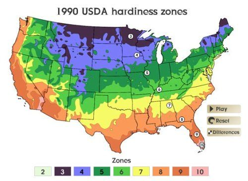 Usda Zone 5 Gardening Plant Hardiness Zone Plant Hardiness Zone Map Growing Zones Map