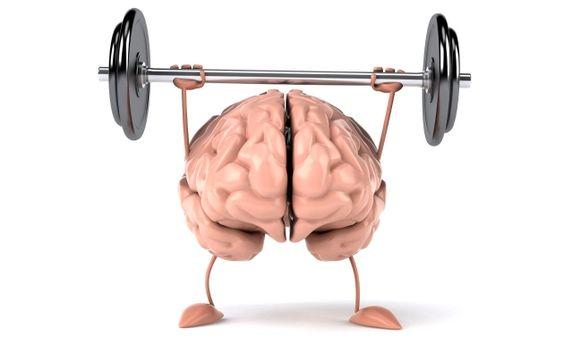 RINCON DEL BIBLIOTECARIO: Cómo ejercitar el cerebro
