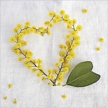 Coeur de mimosa par Amélie VUILLON Carte de Voeux Nouvelles Images