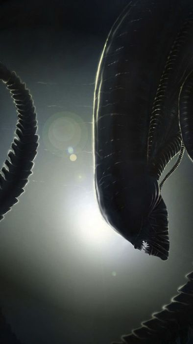 Alien. I've always loved, seriously loved, this brilliant monster design. It's classic for a reason. It's excellent.
