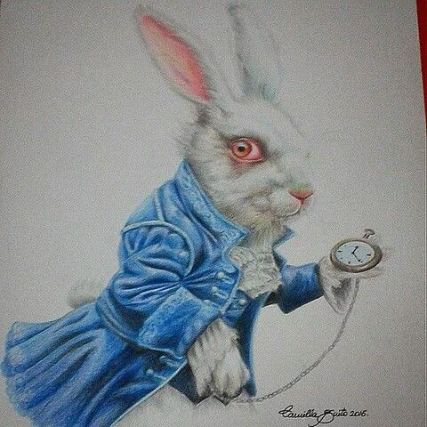 Coelho Branco Alice No Pais Das Maravilhas Desenho Com Lapis De