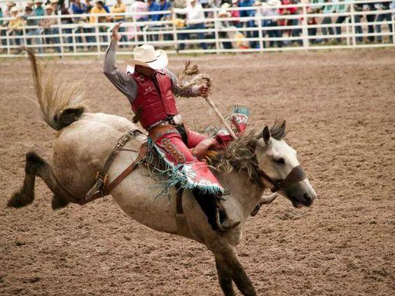 Rodéo et musique country dans le Wyoming Bienvenue dans l'Amérique d'antan, l'Amérique des plaines infinies et des gigantesques troupeaux, l'Amérique des cowboys. Voilà tout l'esprit du «Cheyenne Frontier Days» qui, comme son nom l'indique, se tient dans la ville de Cheyenne, dans l'Etat du Wyoming. Au programme de la dizainede jours : rodéos, musique et danse country, exposition d'anciennes charrettes à cheval et festin de pancakes. L'été, la population de la ville de Cheyenne est…