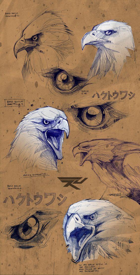 Croquis d'aigle avant création by Artem Solop