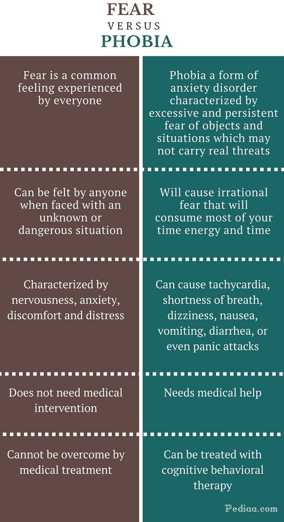 how to face your fears common fears infographic