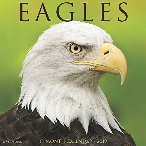 Download Pdf Eagles 2019 Wall Calendar Free Epub Mobi Ebooks Wall Calendar Calendar Calendar Download