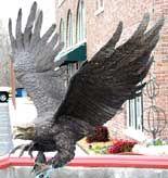 Life Size Eagle