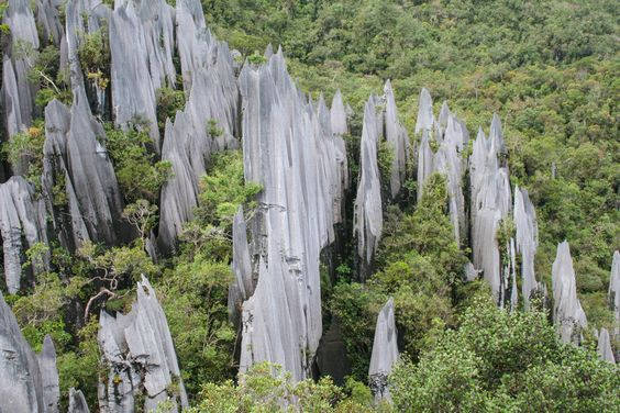 parc national de gunung mulu