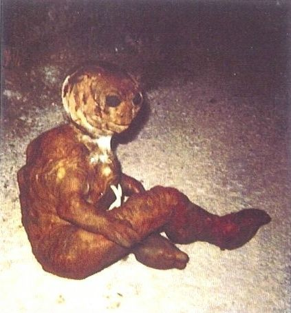 HUMANOID CREATURES FOUND ALL OVER THE WORLD… IS SOMEONE ...