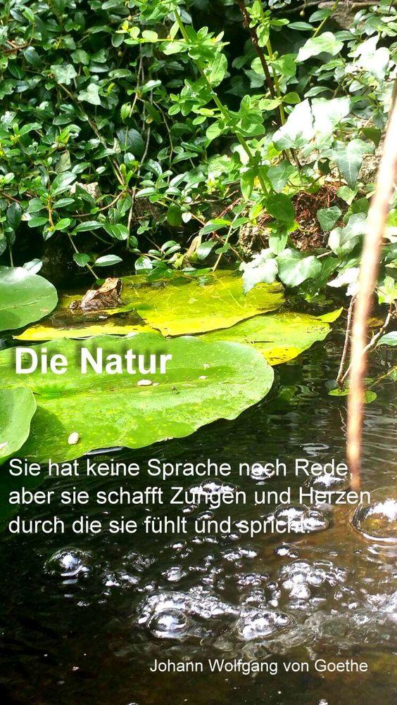 Text: Johann Wolfgang von Goethe, (1749-1832) deutscher Dichter   Foto: Angelika Albrecht-Stuempfig