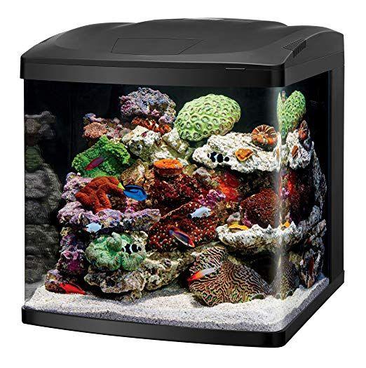 Coralife Led Biocube Aquarium Kit 20 X 21 875 X 21 5 Saltwater Fish Tanks Aquarium Kit Cool Fish Tanks