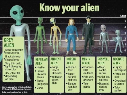 Know your Aliens, chart of the verified and known types of Aliens or ET's that have been documented on Earth, via the Nordic Aliens Tumblr.