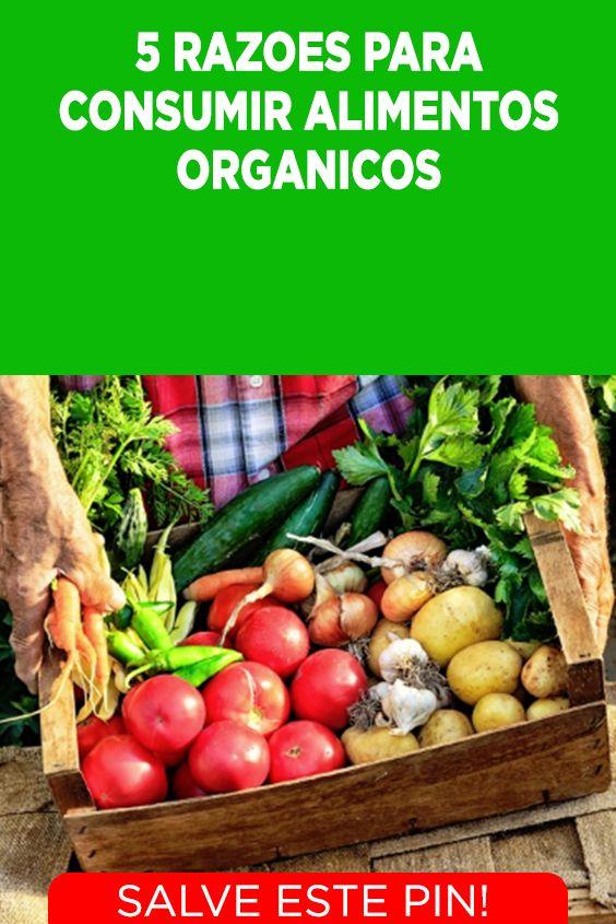 5 Razoes Para Voce Consumir Alimentos Organicos Alimentos Organicos Alimentacao Organica Alimentos