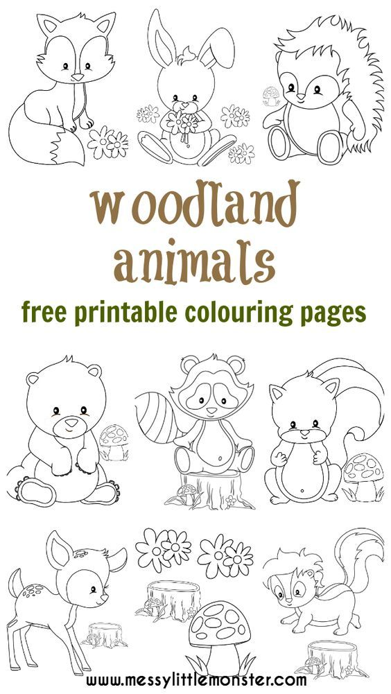 Woodland Animal Colouring Pages Baby Shower Fox Coloring