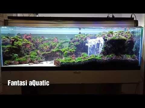 Curug Siranda 2in1 Youtube Aquarium Aquatic Hardscape