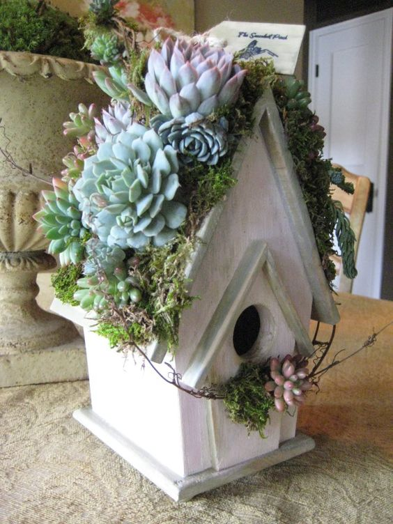"This rooftop succulent garden birdhouse was made with care by Cindy of ""The succulent Perch"" in So. California.: Shabby Chic Birdhouse, Gardening Succulents, Succulents Garden, Birdhouses Feeders, Rooftop Birdhouse, Birdhouse Planter, Garden Birdhouse"