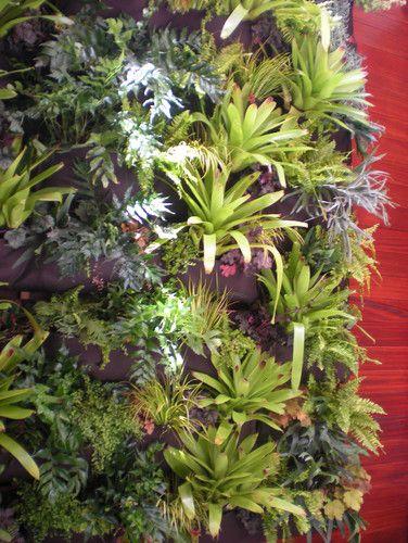 Residential Vertical Garden, Daniel Nolan for Flora Grubb Gardens