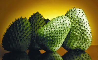 A árvore de fruta que tem potencial 10 mil vezes mais forte do que a quimioterapia, no tratamento de câncer - Disso Você Sabia ?