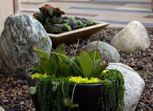 """Goodbye Grass: 7 Inspiring Ideas for a """"No Mow"""" Backyard"""