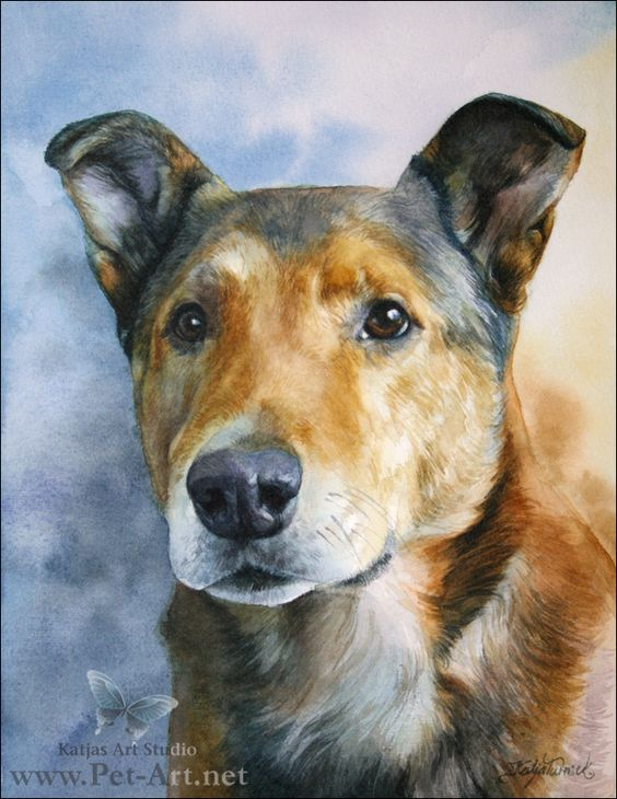 Blog Archive » Watercolor Pet Portraits  Farley Completed