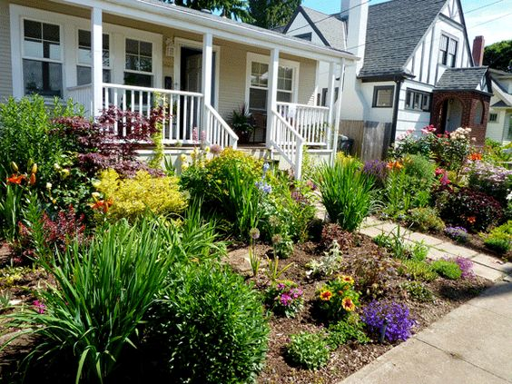 Gardens trees and front yards on pinterest for Grassless garden designs