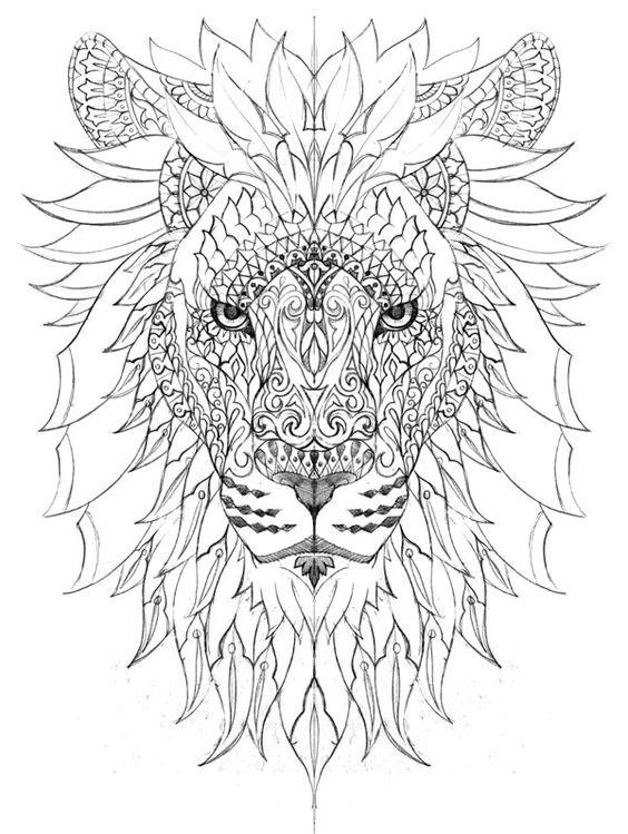 coloriage animaux, coloriage lion, dessin lion,lion, Plus