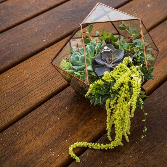 "@lonesomehoboglass on Instagram: ""These two rings are cozy in their own little world while the snow begins to fall. Beautifully planted and photographed by the talented @evermore.creation #rings #weddingring #wedding #weddingdecor #geometric #succulents #garden #succulove #handmade #craft #art #nature #home #homedecor #boho #bohochic #hippie #hipster #gypsy #snow #etsyshop #etsy #buyfolk #jewelry"""