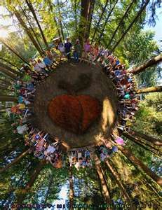 Image Search Results for Oregon Country fair