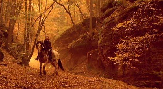 Букет, Kytice (2000) - Фильмы - КиноКопилка: