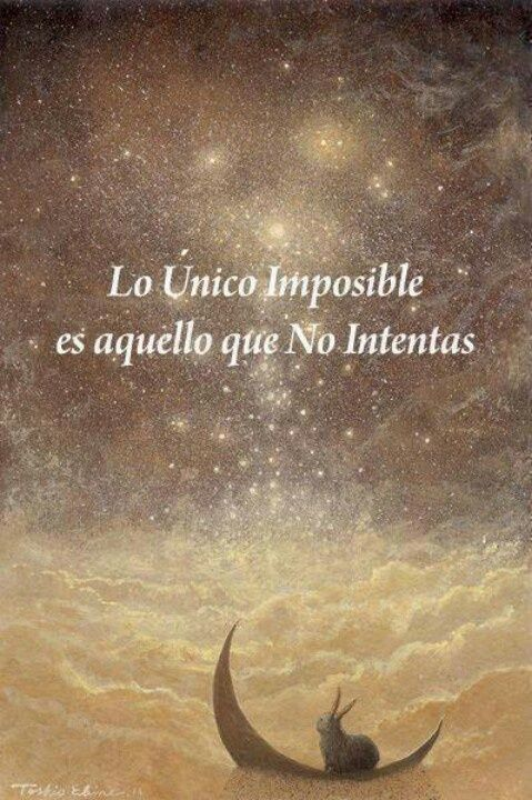 Lo imposible es lo que no intentas... 4943679744ef3f476e28374bf381c226