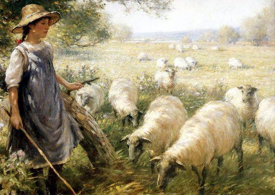 sheep springs girls We raise rare hair & wool sheep for breeders racka, blackbelly, jacob, 4 horn hair sheep, desert dragon, ratca sheep.
