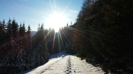 Wandern bei Sonnenschein - Steiermark Lust auf mehr ? http://www.austria.at/wandern